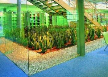 Instalace kapkové závlahy v kampusu Masarykovy univerzity